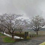 【ポイントNo:2152】千葉県白井市 「下手賀沼」 バス釣りポイント