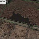 【ポイントNo:2100】千葉県船橋市 「船橋市JA裏の池」 バス釣りポイント