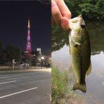 東京都の「オススメ」バス釣りポイント3選!!