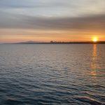 大浜釣り公園2021・2回目の釣行